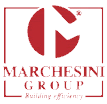 Logo Marchesini Group